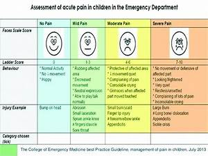 The Royal College Of Emergency Medicine Composite Pain Scale For Children  Level Of Inter