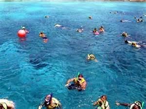 Cozumel Mexico Snorkeling