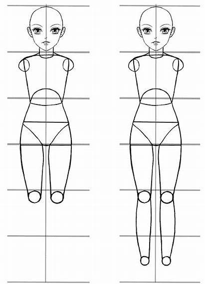 Proportions Tutorial Anime Easy Manga Draw Drawing