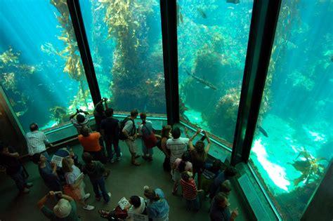 tourism monterey bay aquarium