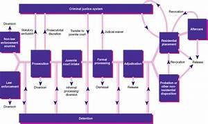 Case Flow Diagram