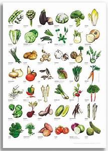 Gemüse Bilder Zum Ausdrucken : gem se poster f r deko home im kinderpostershop und posterladen berlin ~ Buech-reservation.com Haus und Dekorationen