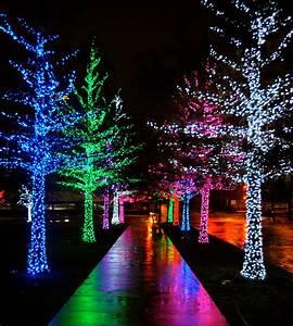 Christmas lights on Pinterest by deedee123456