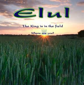 The King Is in the Field Elul Images Month