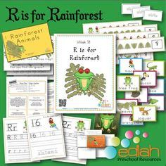 1000 images about r is for rainforest on 386 | cde5d79ee19af23803a07a76fab998f1