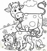 Cow Coloring Pages Animals Babies Funnycrafts Getdrawings sketch template