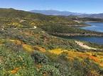 Diamond Valley Lake North Hills Trail - California | AllTrails