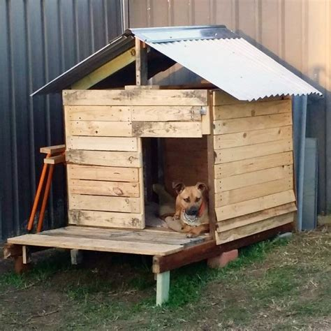 Home Design Ideas For Dogs by Top 60 Best House Ideas Barkitecture Designs