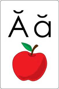 alphabet flash cards phonics flash cards