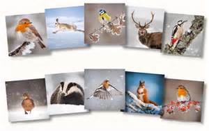 small cottage designs cards and calendars the wildlife trusts