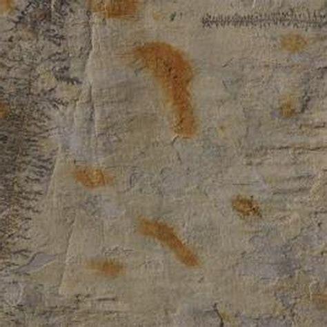 unique remove rust stains ideas  pinterest remove