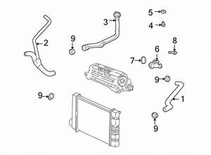 Chevrolet Cavalier Engine  Water  Coolant  Seal  Outlet