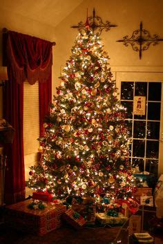 christmas trees trees  decorated christmas trees