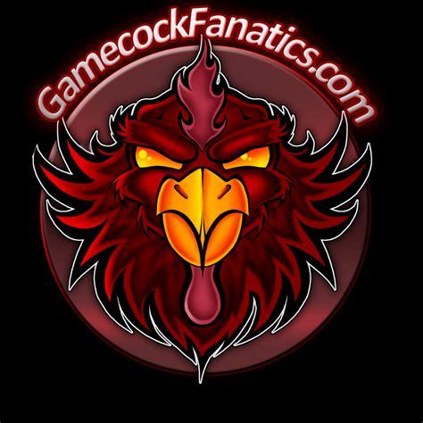 Get Gamecock South Carolina  Pics
