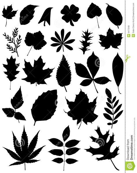 set  leaf vector royalty  stock  image