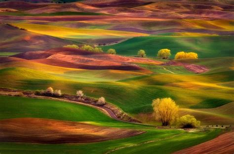 Découvrez Les Magnifiques Paysages De Palouse