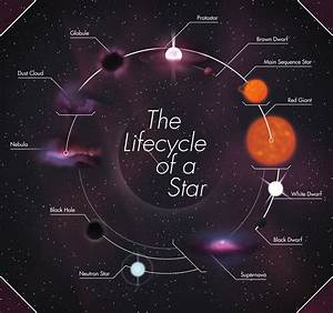 Life Cycle a Black Hole Diagram - Pics about space
