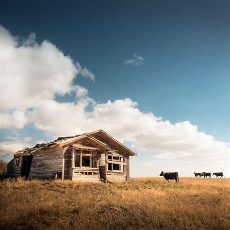 farm landscape pictures lightroom presets tutorials and tips new zealand farm landscape