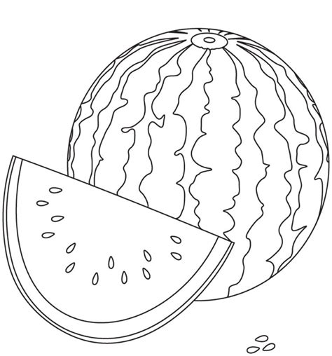 watermelon coloring page coloring page book  kids