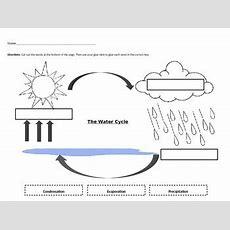 Water Cycle Worksheet By Jocelyn Hendershot  Teachers Pay Teachers