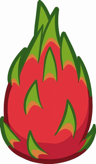 Fruit Dragon Fruits Clip Dragonfruit Clipart Transparent