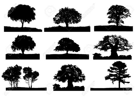 oak tree clipart black and white best oak tree silhouette 17908 clipartion