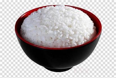 Rice Jasmine Steamed Clipart