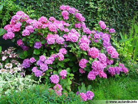 cuisiner du gibier les fleurs de l 39 ombre