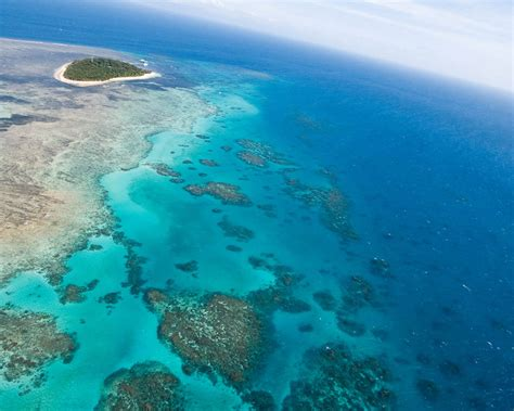 cairns  wallpapersgreat barrier reef
