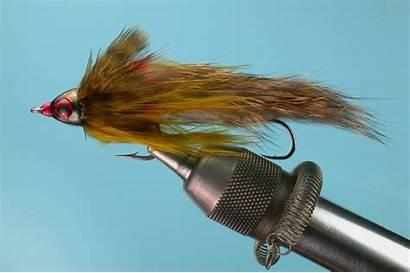 Trout Fly Streamer Streamers Fishing Flies Winter