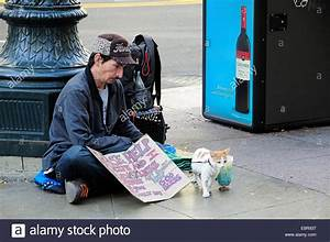 Chicago homeless man sitting with his cat (on leash) and ...
