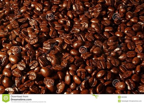 Coffee Bean Background Stock Photo. Image Of Wallpaper Xavier Coffee Mug For Husband Eco That Changes With Heat Recipes Prince Romantic Scene 7. B�l�m Izle Koreant�rk Streaming