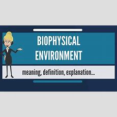 What Is Biophysical Environment? What Does Biophysical