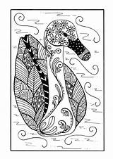 Coloring Duck Zentangle Pages Delicate Adult Colouring Pond Printable Sheets Detailed Favecrafts Cat Birds Sheet Die sketch template