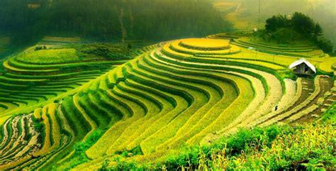 cours de cuisine vietnamienne sapa au découverte idéale de paysages et population