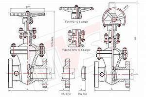 Stainless Steel Gate Valve Os U0026y Type Flanged Ends Manufacturer
