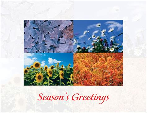 colorful seasons four seasons by cardsdirect