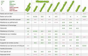 Acheter Gazon A Semer : pelouse semer ~ Premium-room.com Idées de Décoration
