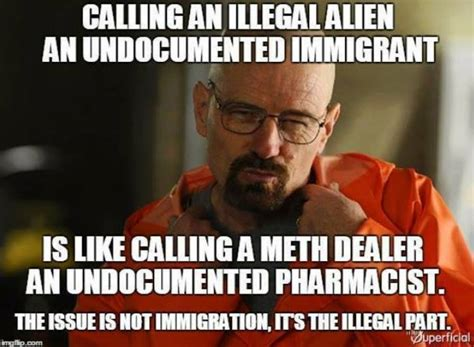 Illegal Immigration Meme - meme destroys political correctness regarding illegals