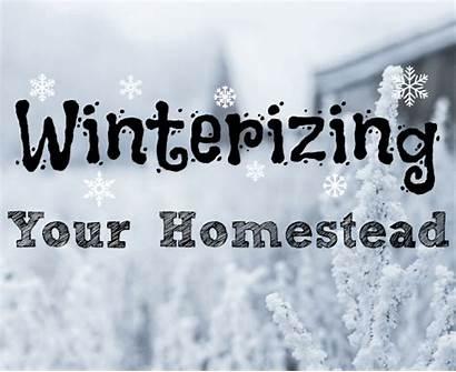 Winterizing Homestead Quotes Thefarmerslamp Winter Money Homesteadbloggersnetwork