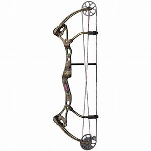 Bear Archery® Siren™ Compound Bow - 218722, Bows at ...