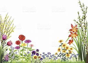 Flower Garden Stock Vector Art & More Images of Beauty ...