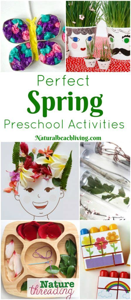 35 the best preschool themes and lesson plans 174 | spring preschool activities pin1 447x1024