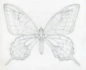 Easy Draw Butterfly