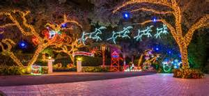 Christmas Projector Light by Snug Harbor Drive Christmas Lights Palm Beach Gardens