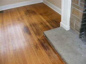 How to clean pet urine from wood floors puppy corner for Dog urine on wood floors how to clean