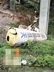 火箭殘骸掉落 巨響驚醒村民 | 多倫多 | 加拿大中文新聞網 - 加拿大星島日報 Canada Chinese News