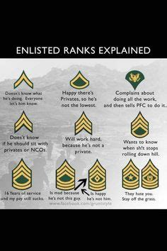 rank structure  insignia  military officers  branches   military service