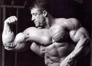 Before And After Steroids Detransformations  Bodybuilders That Lost It All