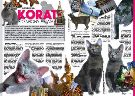 Articles Written About The Korats